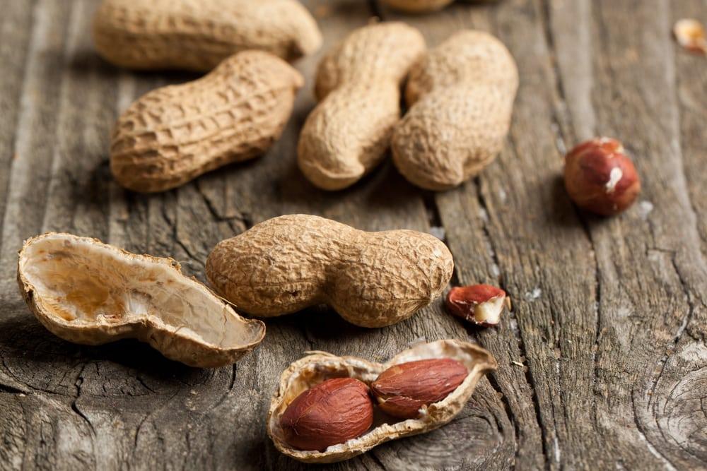 Erdnüsse für Öl